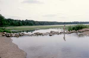 Lake Itasca and the headwaters of the Mississippi River